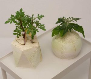 کاربرد پرینترهای سه بعدی در کشاورزی